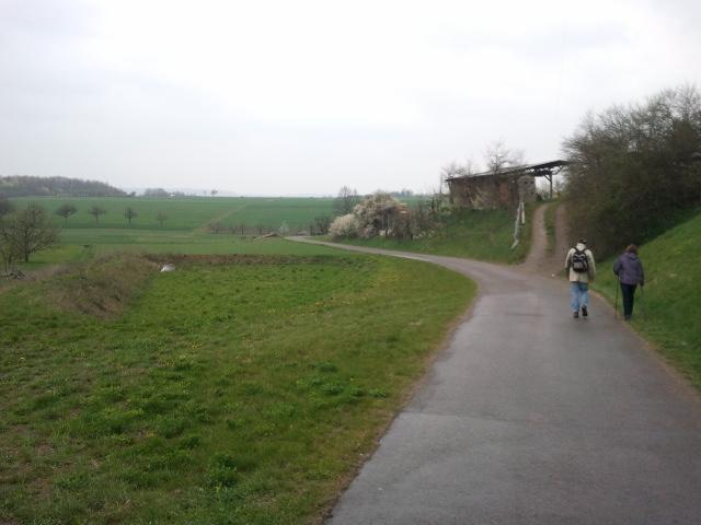 Single frauen tauberbischofsheim