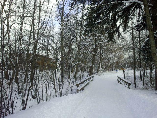 Spaziergang bei Nesselwang