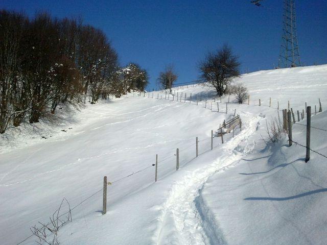 Weg Richtung Schneidbach