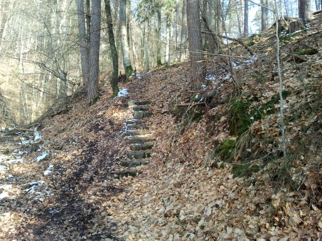 Eine Treppe im Wald