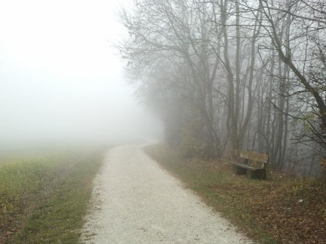 Dieser Weg im Novembernebel
