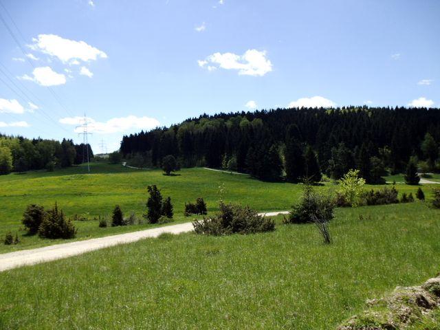 Wacholderwiesen