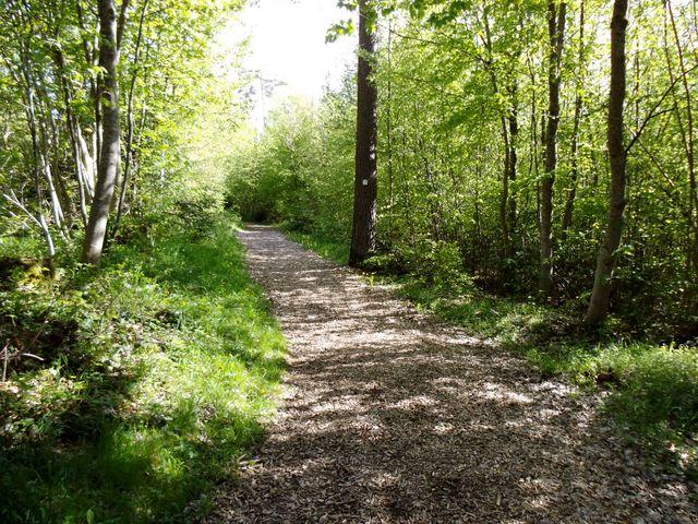 Nordic Walking Strecke