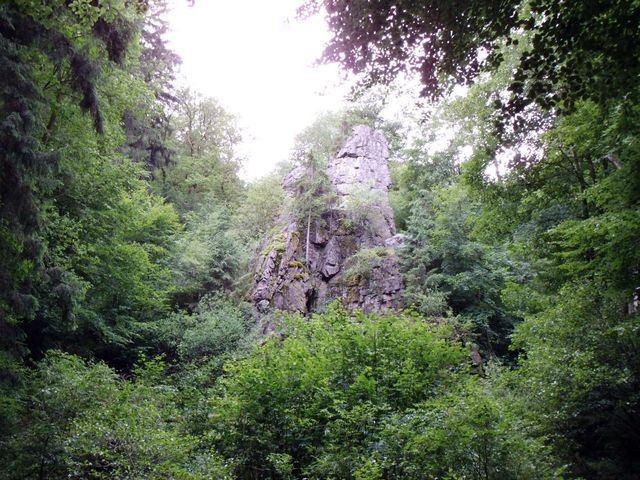 Holzbachtal