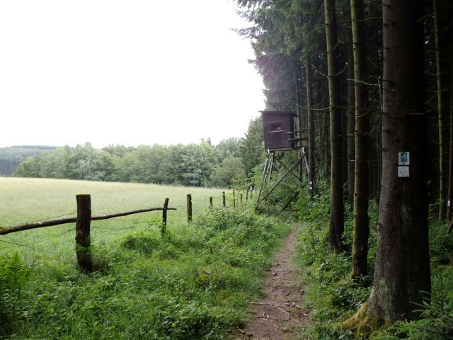 Single wandern saarland