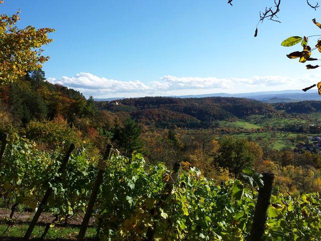 Blick Richtung Hohenzollern