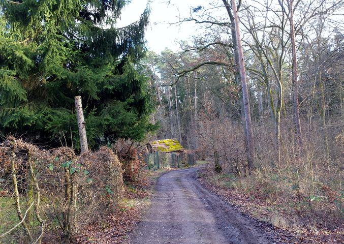 Weg zum Wanderheim Kelter