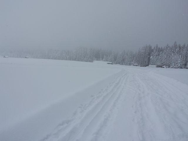 Nebel und Schneetreiben