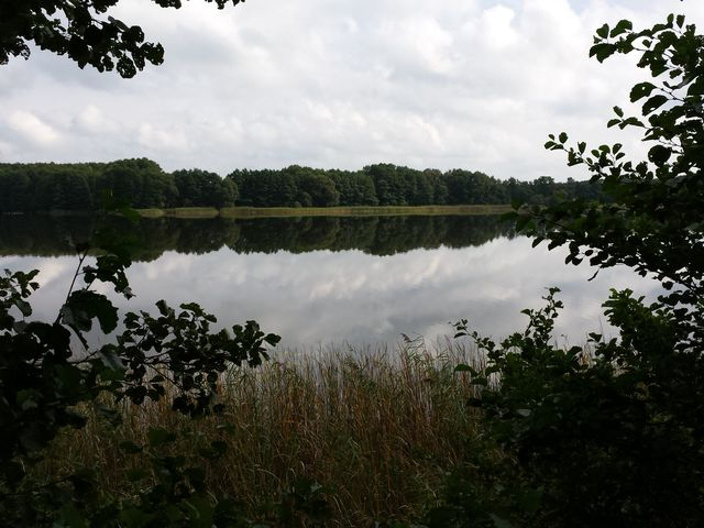 Blick auf den Hofsee