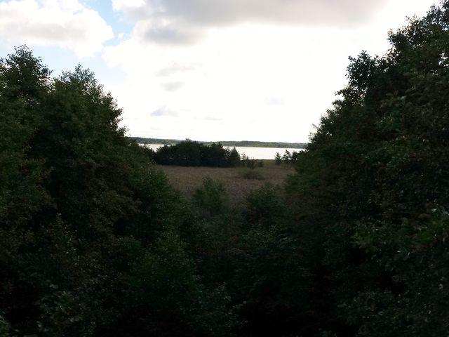 Blick auf den Specker See