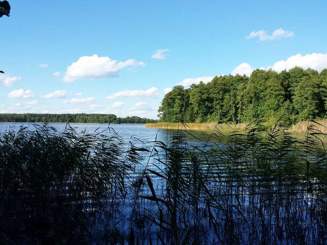 Blick auf den Priesterbäker See
